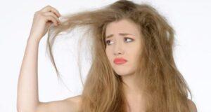 dry hairs